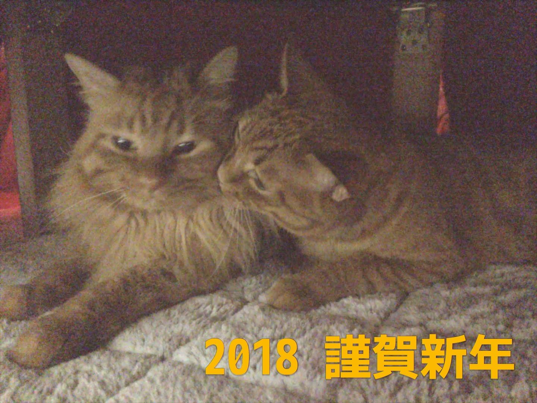 エリオット波動分析 ポンド円 [2017-12-12 火 15:55]